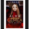 Romance Alma Gêmea por Acaso 2 - Kindle Ilimitado - Li Mendi