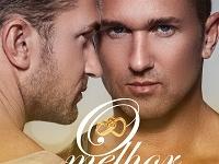 Capa O melhor Amigo do Noivo Romance Gay Amazon Kindle Ilimitado