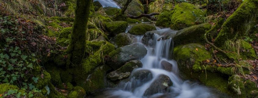 Rio Bonito e Limpo