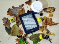 Kindle Amazon - Livros Grátis no Kindle Ilimitado